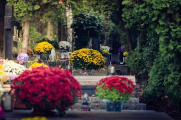 Dzień Wszystkich Świętych na cmentarzu