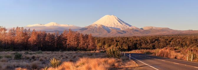 Road at Tongariro National Park and volcano Ngauruhoe, New Zealand