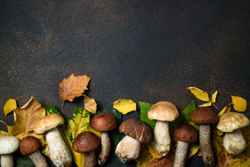 Autumn composition. Mushrooms Boletus and Autumn leaves background. Fall season mood. Top view, copy space