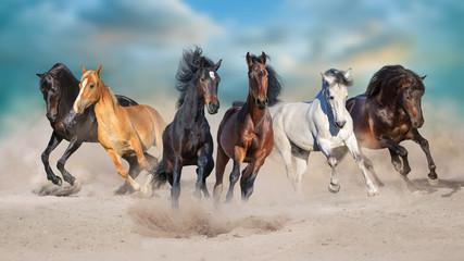 Konie biegają galopem w pustynnym pyle na tle burzowego nieba