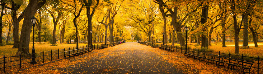 Autumn panorama in Central Park, New York City, USA