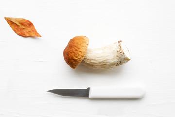 Autumn fresh boletus mushroom and knife on a table, close up.