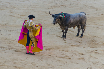 bullfighter in blue and gold suit