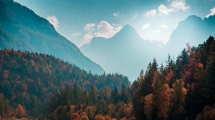 Piękny krajobraz górski z jesień las. Alpejskie krajobrazy - Alpy Julijskie