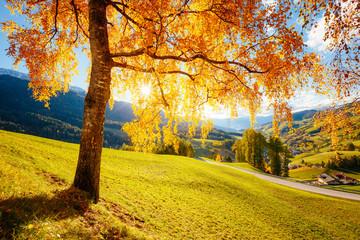 Magiczny obraz słonecznych wzgórz we wsi Santa Magdalena. Dolina Funes, Alpy Dolomitowe.