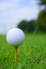 Golf ball and tee on golf green course background