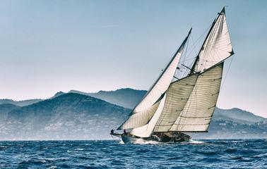 Regaty jachtów żaglowych. Żeglarstwo. Żeglarstwo