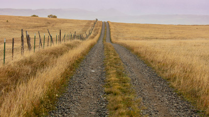 Dirt road on Hastings Mesa leads to wilderness and grasslands, Ridgway Colorado