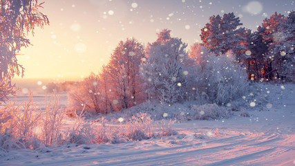 Cudowny zimowy poranek krajobraz o wschodzie słońca ze spadającymi płatkami śniegu.