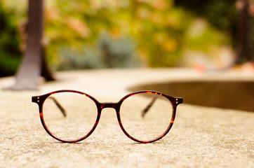 Rounded eyeglasses on autumn background