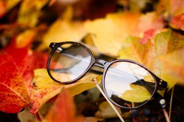 Zaokrąglone okulary na jesiennych liściach