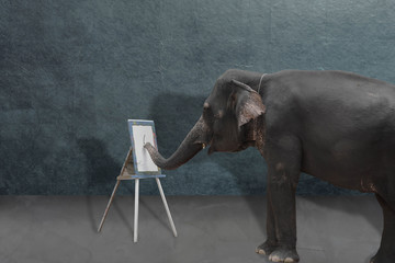 elephant painting on the whiteboard, creative idea concept