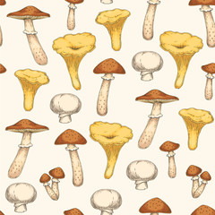 Seamless Pattern with Edible Mushroom