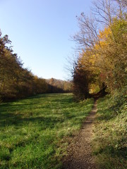 Sentiero nel parco del Curone con galleria naturale
