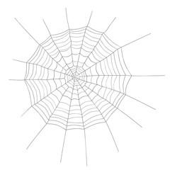 3d illustration of a spider web