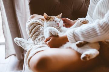Dziewczyna z kotem relaksuje na kanapie