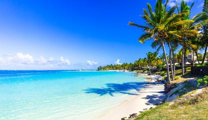 niesamowite krajobrazy tropikalnej plaży. Wyspa Mauritius, klacz Bel