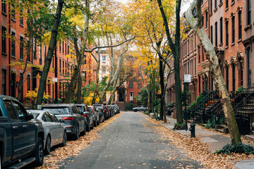 Brownstones and fall color in Brooklyn Heights, New York City