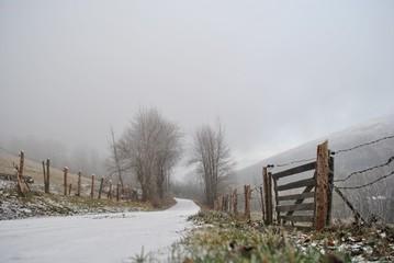 Pejzaż zimowy z mgłą