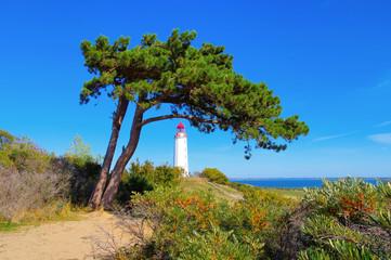 Hiddensee, der Leuchtturm Dornbusch im Norden der Insel - island Hiddensee, the Dornbusch lighthouse