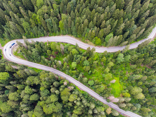 Highway road in green forest
