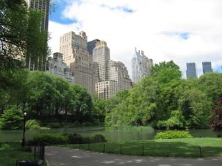 Central_Park_Bäume