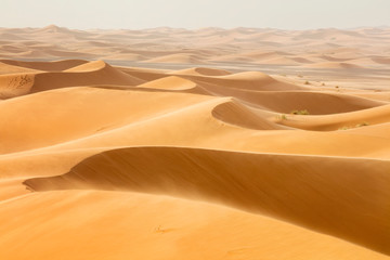 waves from sand dunes in desert in Morocco