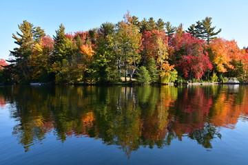 lac, automne, feuilles, saisons, forêt, couleurs, arbre, erables