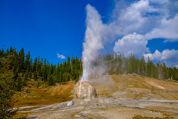 A wide, closeup view of the Lonestar Geyser in full eruption at Yellowstone National Park