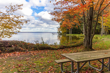 Michigan National Forest In Autumn. Sunny fall day on the shores of Brevort Lake in the  Hiawatha National forest of the Upper Peninsula of Michigan.
