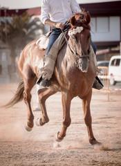 montando caballos andaluces en acción