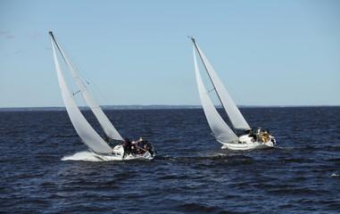 regatta racing sailing yachts in the sea