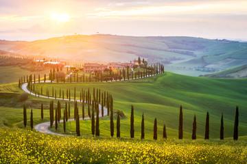 Typowy krajobraz w Toskanii - kręta droga wyłożona drzewami cyprysowymi na zielonych łąkach i polach. Zachód słońca we Włoszech.