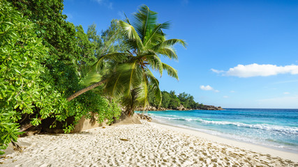 rajska plaża na Seszelach 1
