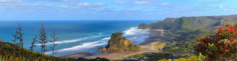 Piha Beach and Lion Rock aerial panorama
