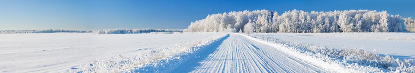 panorama pejzaż zimowy z drogi i lasu