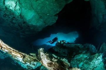 Scuba diving at the Cenote Jardin del Eden in Mexico