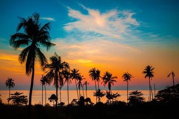 Palmy o zachodzie słońca, Koh Chang