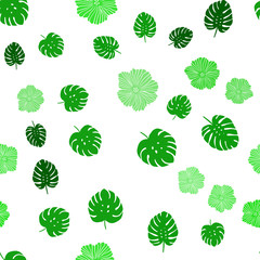 Light Green vector seamless natural backdrop with flowers, leaves.
