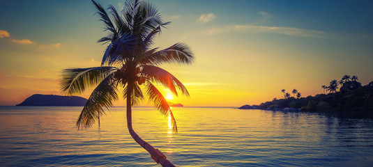 The silhouette of a coconut palm on the background of the sea and a stunning bright sunset, wallpaper, background and texture for advertising, panoramic banner format