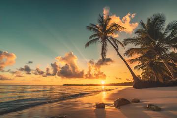 Tropikalna plaża w Punta Cana, Dominikana. Palmy na piaszczystej wyspie na oceanie.