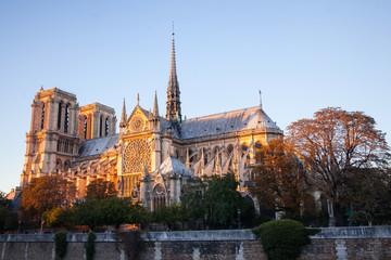 Notre Dame de Paris Cathedral.Paris. France