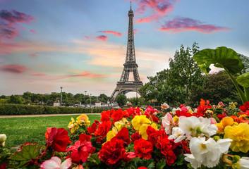 panoramę dachów miasta Paryża z Wieżą Eiffla
