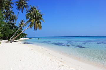Beautiful beach at Karimunjawa