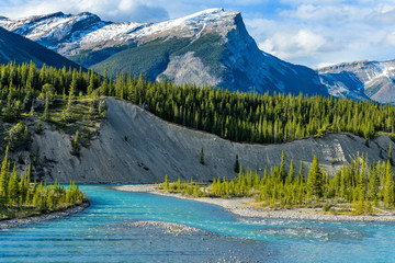 Blue River - Colorful streams of Saskatchewan River calmly flowing through a steep mountain valley, Banff National Park, AB, Canada.