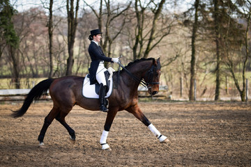 Dressage rider dressed in a tuxedo with cylinder, photographed on the horse in the trot reinforcement from the side, that horse stretches the front leg forward.