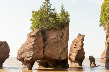 Famous Hopewell rocks of Bay of Fundy at high tide, New Brunswick, Canada