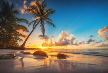 Palm i tropikalnej plaży w Punta Cana, Dominikana