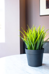 Artificial green plastic plant in a black pot on a white table in a cafe restaurant.