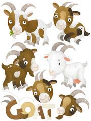 cartoon scene with pig on white background - illustration for children